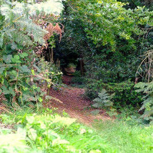 Secret Passage