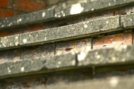 POV Steps